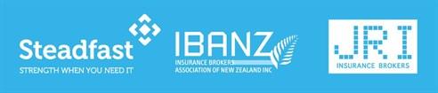 BDG logo block - steadfast - ibanz - jri